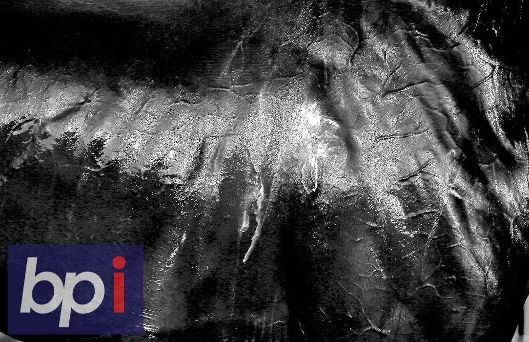 BPI_KM_BESTOF2014_003